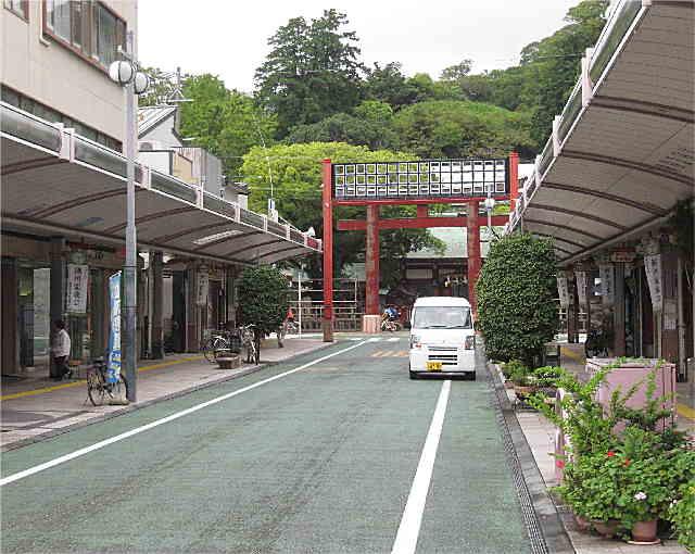 Aoi127